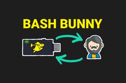 Thumbnail Bash Bunny Payloads